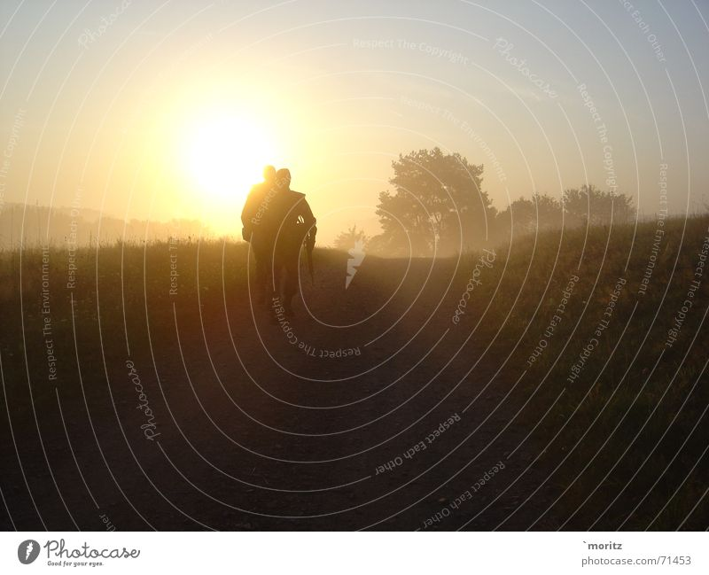 morning-hour Sunrise Morning Fog Soldier Bright Federal armed forces