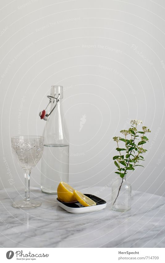 White Flower Calm Gray Stone Bright Flat (apartment) Room Living or residing Glass Drinking water Simple Table Clean Clarity