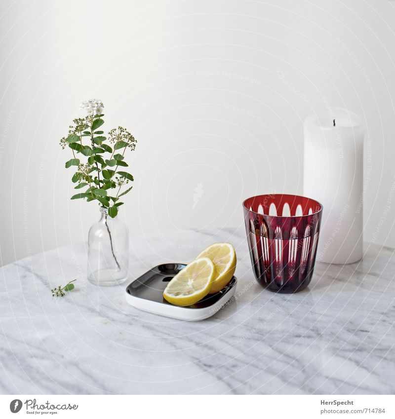 White Flower Wall (building) Wall (barrier) Stone Flat (apartment) Living or residing Glass Drinking water Fresh Simple Beverage Table Clean Candle