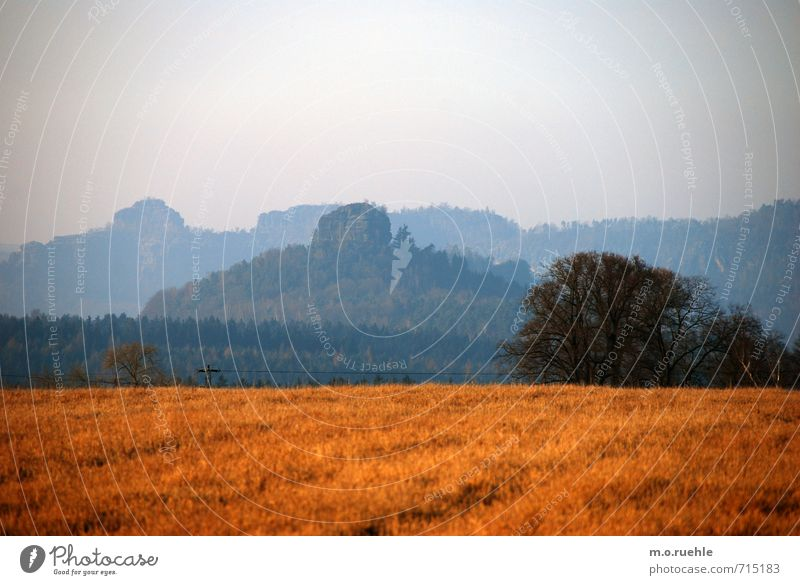 one of another Environment Nature Landscape Animal Sky Cloudless sky Spring Tree Bushes Field Hill Mountain Moody Bohemian Switzerland Colour photo