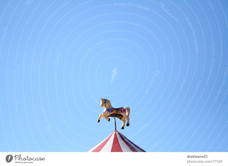 Children's dreams dreamed ... Carousel Theme-park rides Fairs & Carnivals Merry-go-round Roof Horse Sky Blue