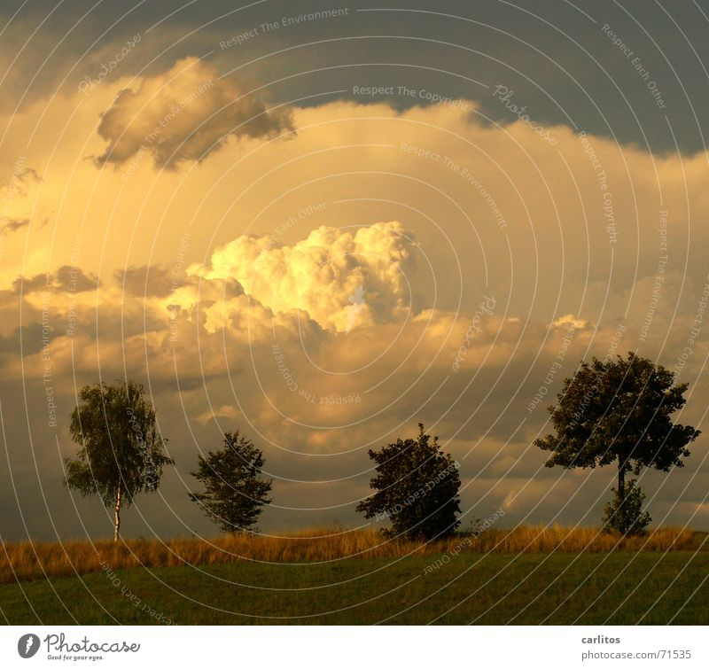 Sky Clouds Happy Landscape Contentment Peace Cloud pattern