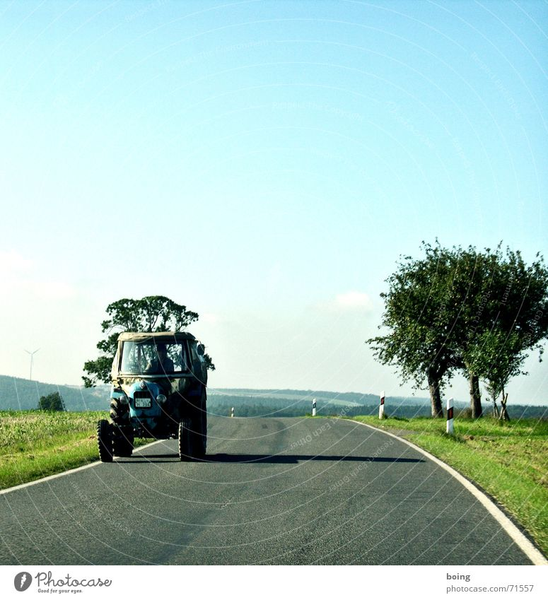 Tree Autumn Field Agriculture Craft (trade) Harvest Curve Tractor Country road Bend Plow Fruit trees Skidmark
