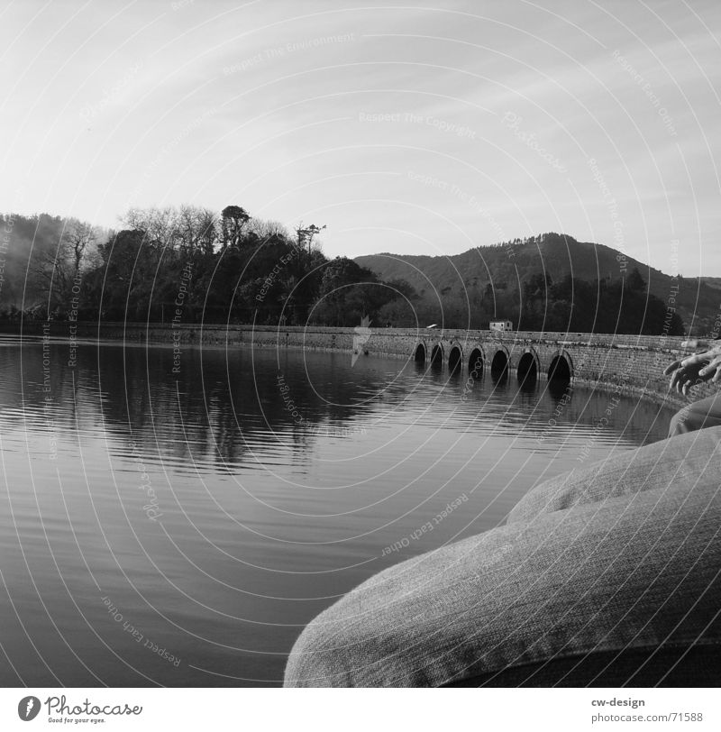 quay wall Lake Knee breeches Water level Underwater photo Seaman Knee cap Loneliness Patient Jetty Black Tree Pants Reflection Calm Serene Hand Fingers Man