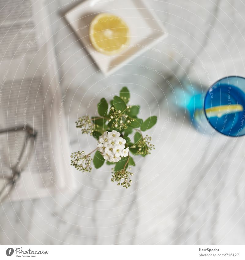At the Marble Table II Beverage Cold drink Drinking water Living or residing Flat (apartment) Simple Gray White Slice of lemon Lemon Glass Tumbler Newspaper