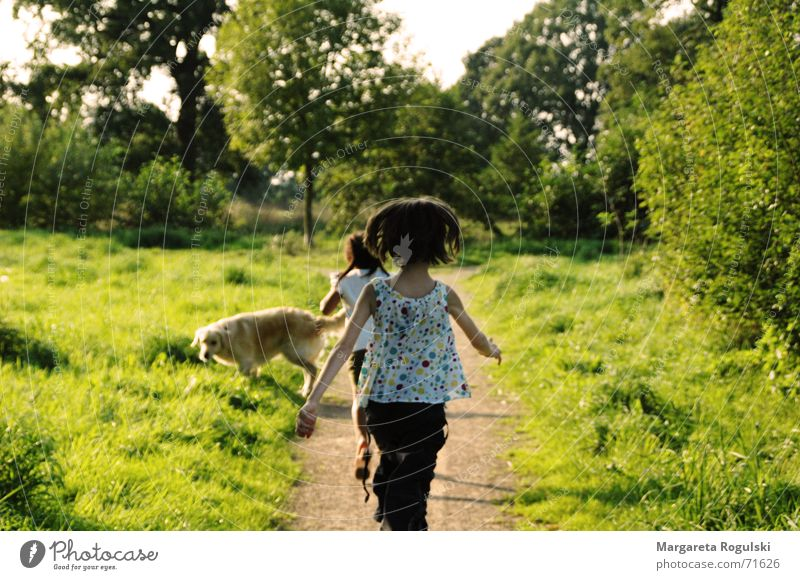 Child Girl Summer Autumn Meadow Playing Field Walking Running Happiness Romp