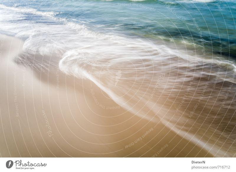 Water Beach Ocean Sand Baltic Sea Blue Gold White Mecklenburg-Western Pomerania Wustrow Waves Foam White crest Colour photo Exterior shot Deserted