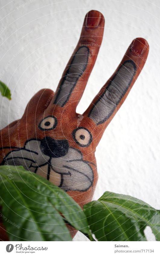 Look Look Plant Foliage plant Animal 1 Looking Funny Hare & Rabbit & Bunny Beautiful Painted Comic Comic strip character rabbit head Hare ears Creativity Cute