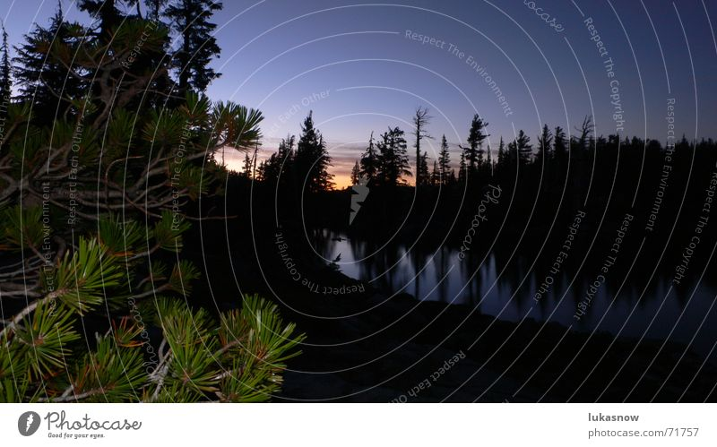 Desolation Valley 2 Fir tree Spruce Lake Sunset Forest Back-light Reflection Mirror Smoothness Hiking Calm Dream Vacation & Travel Mountain Clarity
