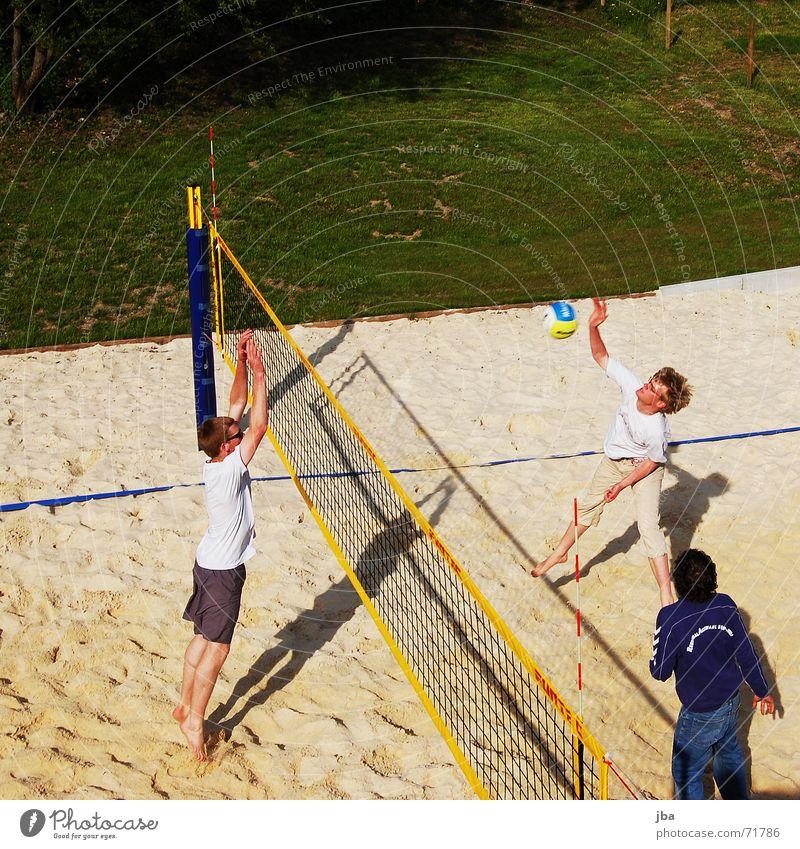 beach Volleyball (sport) Beach Block Momentum Swing Jump Corner Man Sports Field Gstaad Grass Green Meadow Ball smash Power Net net edge Athletic Looking