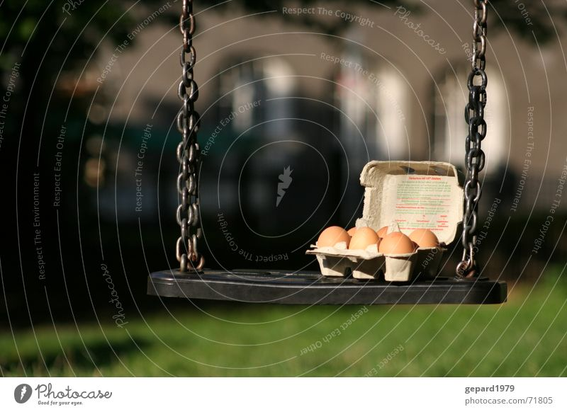 egg swing Sun Playground Boredom Swing Six pack Egg Chain Eggs cardboard Colour photo Exterior shot Detail Deserted Day Shadow Deep depth of field