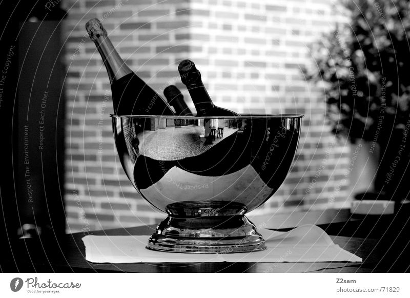 munich breakfast Sparkling wine Table Bottle Silver Black & white photo Object photography Still Life Deserted Champagne Champagne bucket Champagne bottle
