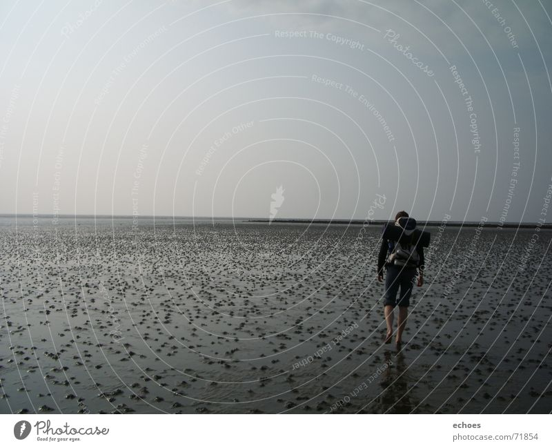 walk to the endlessness Horizon Ocean Lugworms Gray Low tide Hiking Infinity Going Loneliness Calm Walking Human being Mud flats Sky To go for a walk