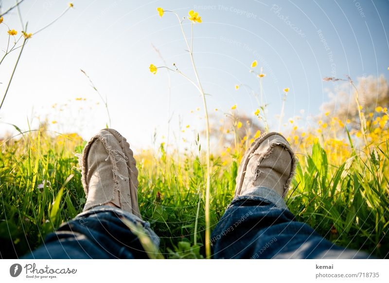 Meadow loungers deluxe Lifestyle Happy Human being Legs Feet 1 Nature Sky Spring Grass Blossom Foliage plant Jeans Footwear cloth shoes Relaxation Lie Fresh