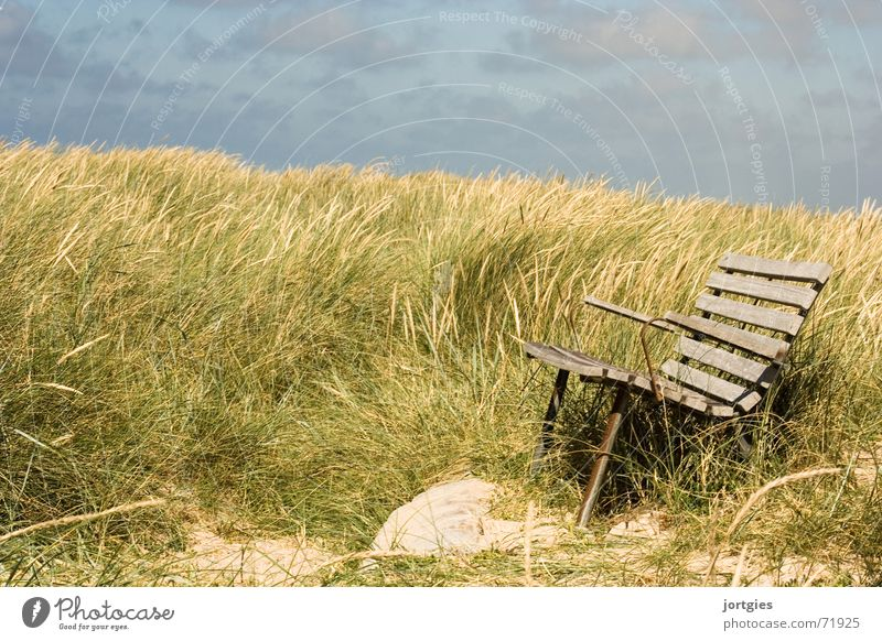 quiet place Bench Sit Beach dune Dune Ocean Grass Wind Coast Breeze Relaxation Break Calm Vacation & Travel