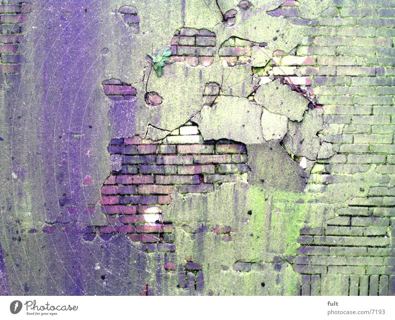 old wall Wall (building) Wall (barrier) Plaster Structures and shapes Green Violet Architecture Hollow Stone