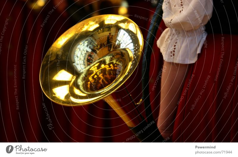Music Glittering Blow Antlers Loud Musical instrument Musician Bleak Flash Brass Brass band