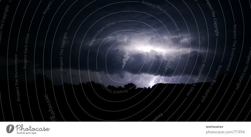 White Tree Black Clouds Dark Bright Power Electricity Lightning Storm Tension Agitated Cargo Thunder Force of nature