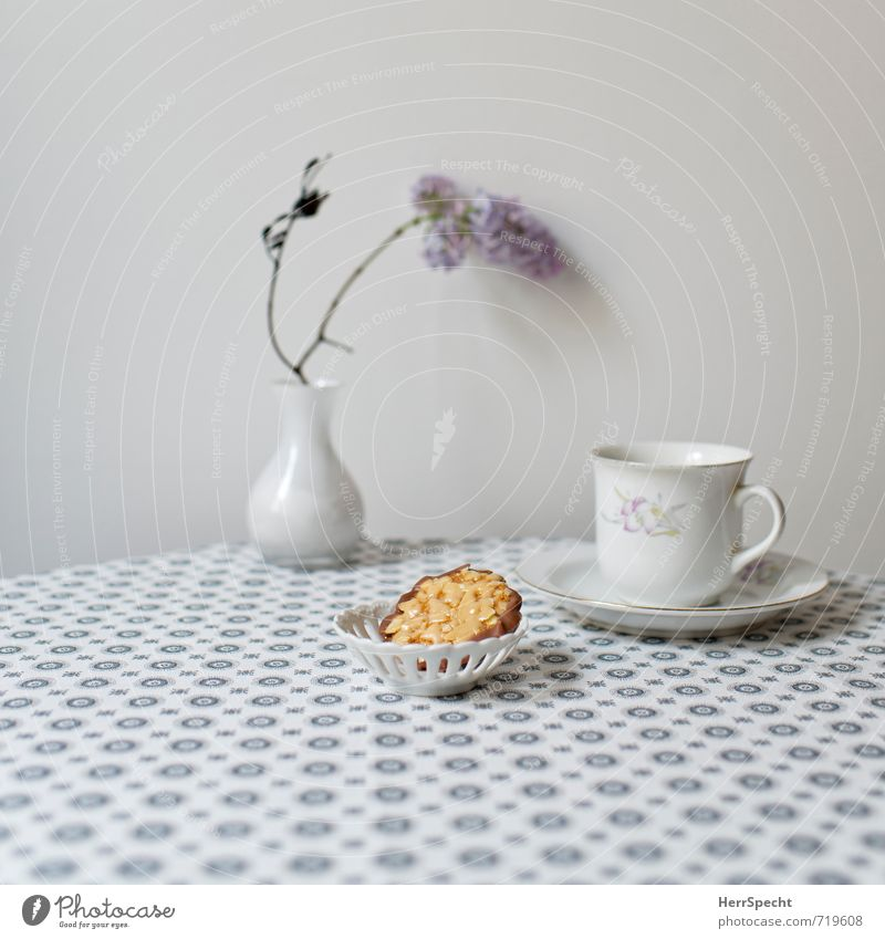 Beautiful Gray Food Living or residing Arrangement Decoration Beverage Table Clean Retro Coffee Candy Tea Cozy Chocolate Tablecloth
