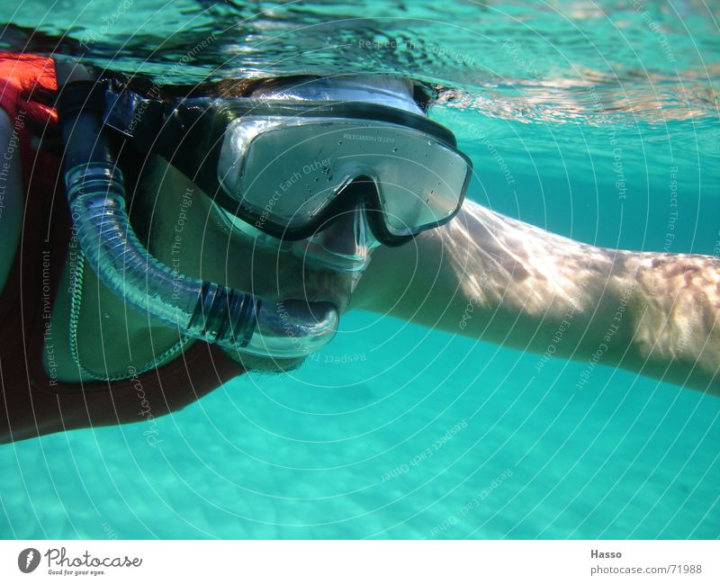 blubb blubb Dive Diving equipment Ocean Snorkeling France Summer Vacation & Travel Physics Cooling Bottom of the sea divingrillle Water Mediterranean sea Warmth