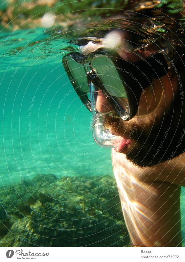 Blubb Blubb³ Dive Snorkeling Diving equipment Diving goggles Man Facial hair Ocean France Bottom of the sea Surface of water Summer Vacation & Travel Physics