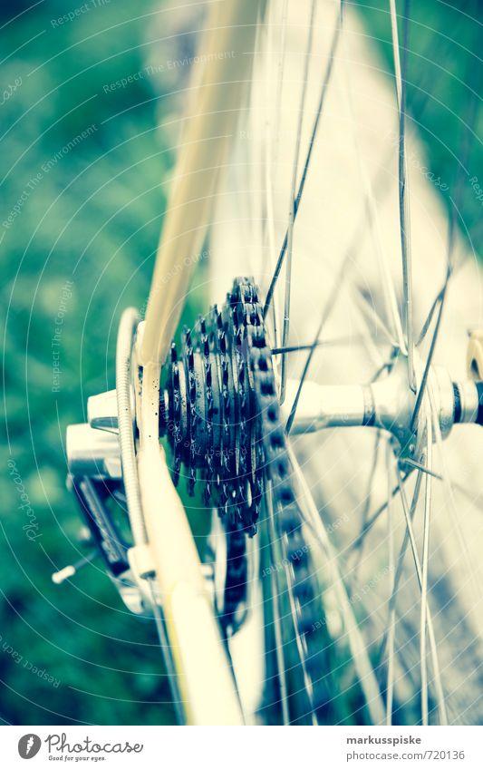 City Environment Street Meadow Lanes & trails Style Sports Lifestyle Design Transport Elegant Success To enjoy Retro Cycling Vintage