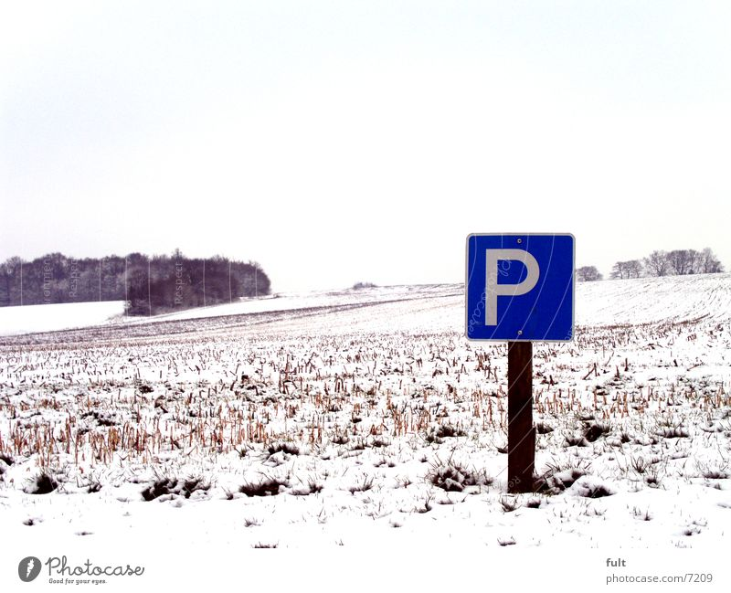 Nature Tree Winter Landscape Cold Snow Mountain Horizon Field Signs and labeling Frost Parking Parking lot Icon