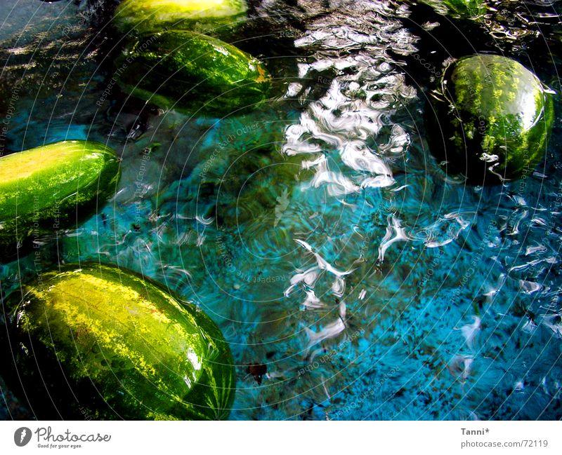 watermelons Water melon Green Effervescent Fresh Blue blu fruit Appetite