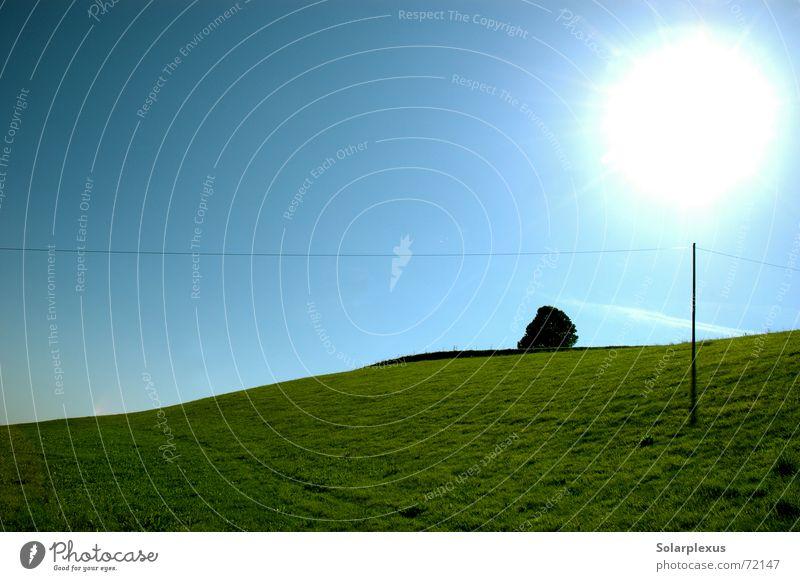 shade provider Back-light Power transmission Horizon Globe light Magic wand Morning Sun loopop Elevation