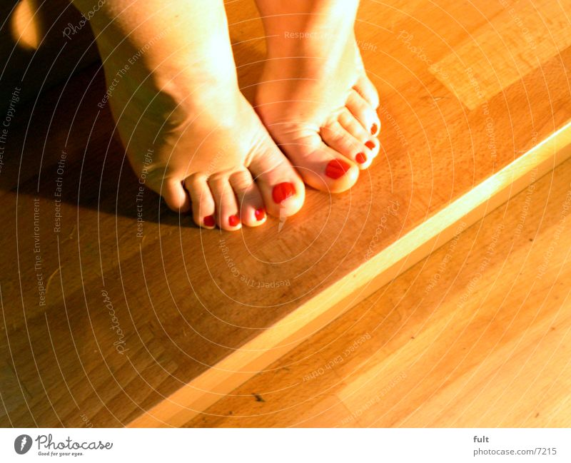 feet Toes Woman Wood Consecutively Feet Legs Human being Skin Stairs Sit Indicate Shadow laid Ankle Hoe Barefoot