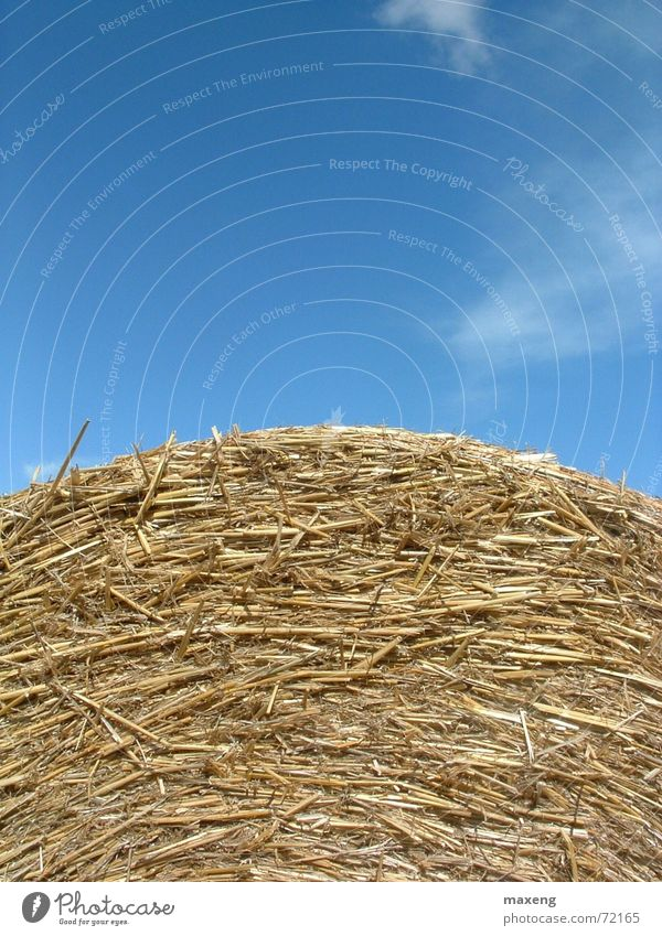 Sky Blue Summer Clouds Straw Bale of straw