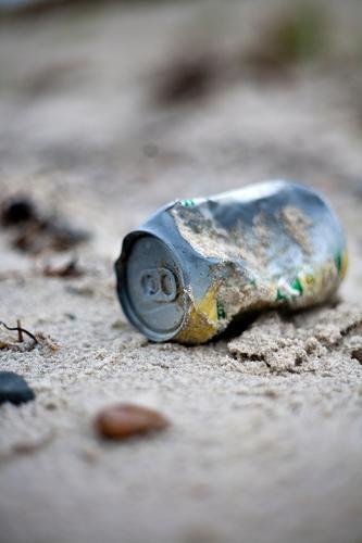 Nature Vacation & Travel Landscape Environment Autumn Coast Island Elements Baltic Sea Trash Fear of the future Concern Sandy beach Climate change Tin