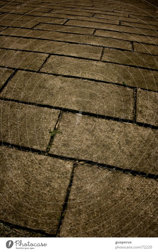 Loneliness Cold Lanes & trails Going Sidewalk Paving stone Promenade Why Along here