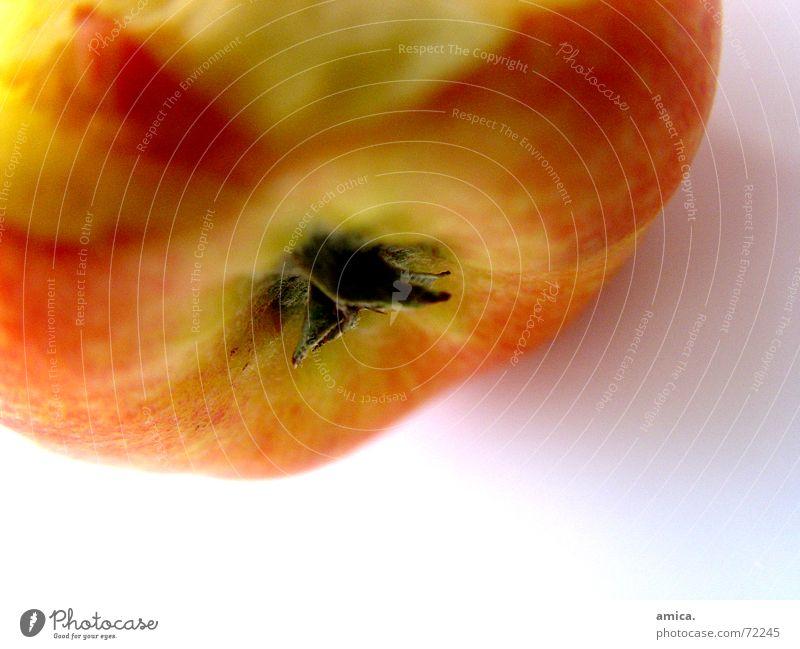 Beautiful White Green Red Yellow Orange Apple