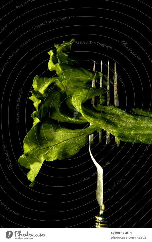 Iceberg lettuce (coloured) Fork Kitchen Green Lettuce Metal Nutrition Vegetarian diet