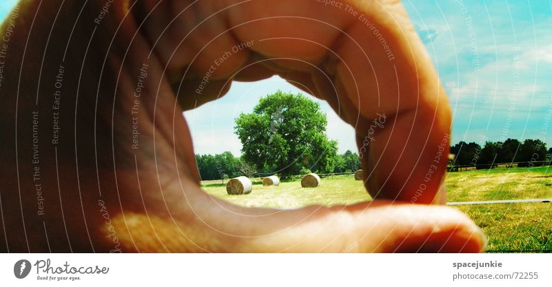 peephole in nature Hand Hollow Grass Tree Bale of straw Clouds Far-off places Yellow Nature Pasture Sky Looking Blue