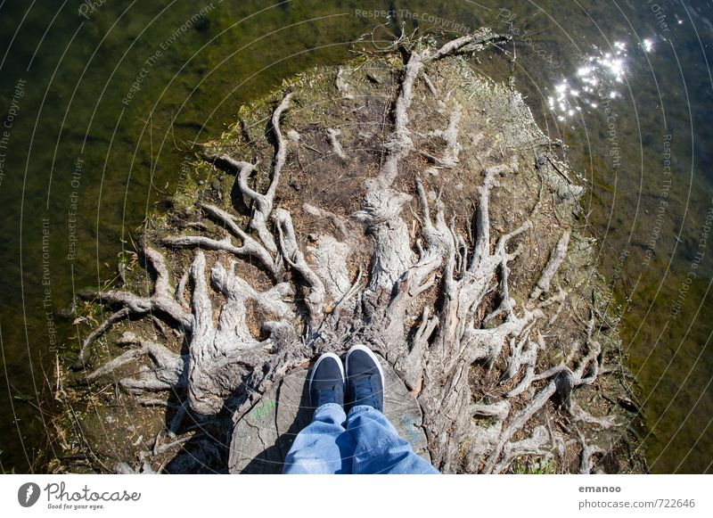 Back to the roots Lifestyle Style Joy Trip Adventure Human being Man Adults Feet 1 Environment Nature Water Tree Lake Stand Growth Old Tall Broken Brown