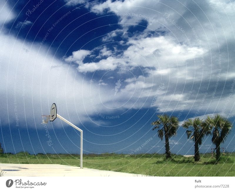 vacation Basketball basket Meadow Grass Palm tree Clouds Coast Beach Vacation & Travel Places Horizon Calm White Spain Sky Nature Sports Blue today Landscape