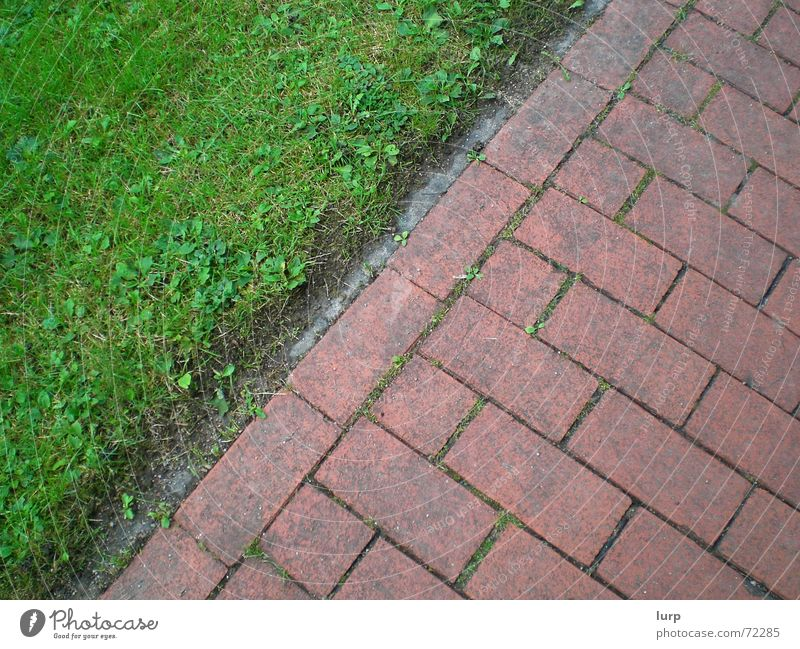 Nature Green Plant Red Street Environment Grass Stone Earth Dirty Floor covering Lawn Simple Under Village Sidewalk