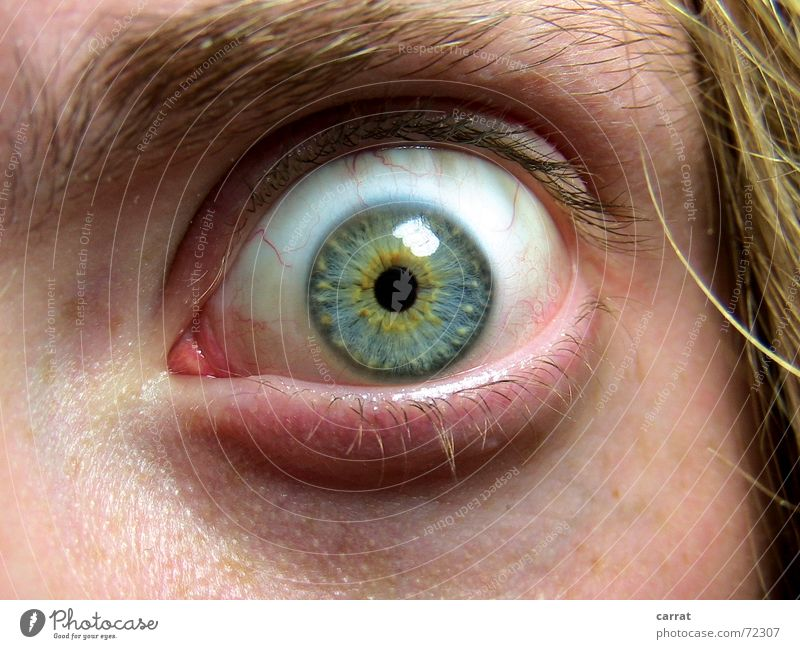Man Blue Eyes Hair and hairstyles Blonde Fear Skin Perspective Creepy Intoxicant Respect Panic Eyelash Vessel Eyebrow Shock