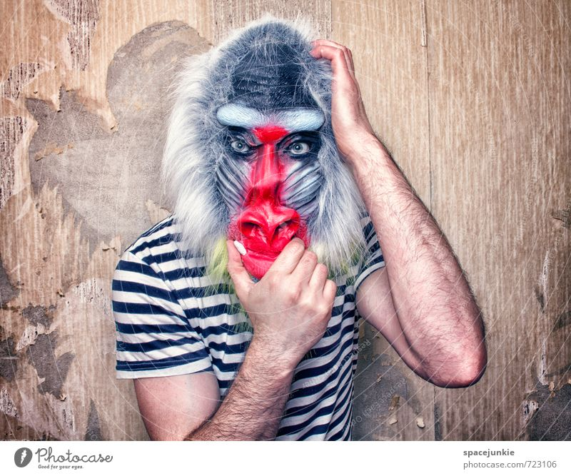 Human being Youth (Young adults) Man Blue White Red Animal Young man Adults Wall (building) Wall (barrier) Exceptional Masculine Wild animal Threat Observe