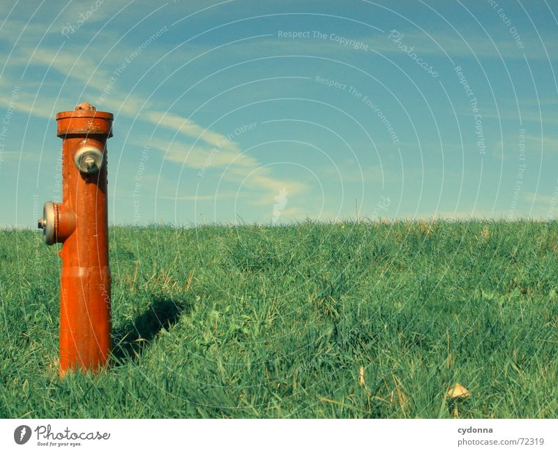 water dispenser Fire hydrant Red Meadow Grass Summer Refrigeration Statue Exceptional Society Expulsion Things Sky Column Nature bizarre Contrast Income