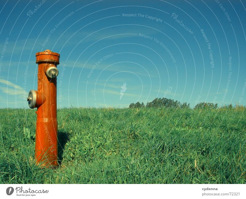 Water dispenser II Fire hydrant Red Meadow Grass Summer Refrigeration Statue Exceptional Society Expulsion Things Sky Column Nature bizarre Contrast Income