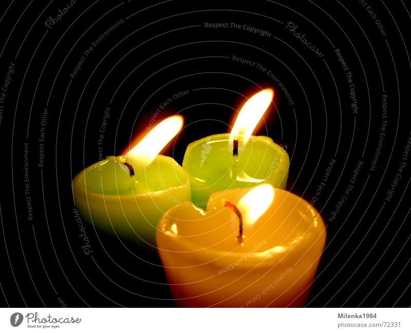 Green Yellow Colour Dark Bright Moody Candle Romance Friendliness Harmonious Pensive Candlelight Dark background