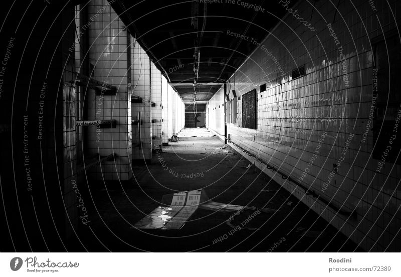 near-death experience Light Tunnel Building Dismantling Ripe for demolition Building rubble Derelict Factory Story Hallway Mine Creepy Shadow Shabby Old Life