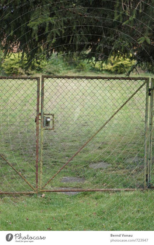deep green Deep Green Deserted Garden door Steel Wire netting Fence Gate Knob Meadow Fir tree Hang Tilt Entrance Access Stoop Footpath