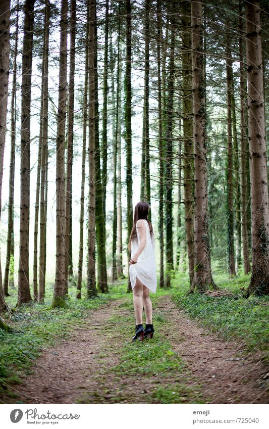 Where are you going? Feminine Young woman Youth (Young adults) 1 Human being 18 - 30 years Adults Environment Nature Forest Dress Exceptional Thin