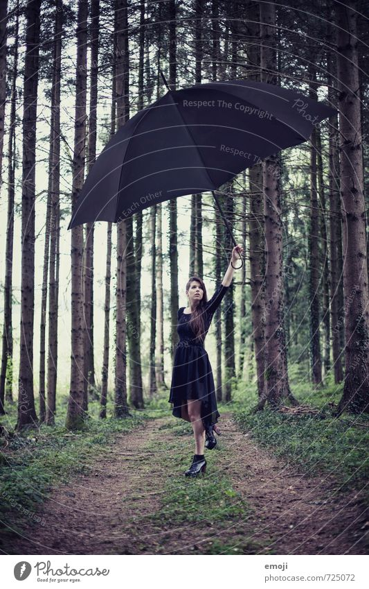 surreal / 2200 Feminine Young woman Youth (Young adults) 1 Human being 18 - 30 years Adults Nature Forest Exceptional Dark Umbrella Surrealism Colour photo