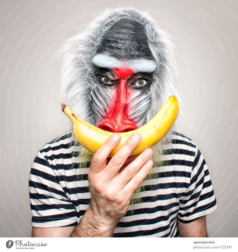 banana Human being Masculine Young man Youth (Young adults) 1 Art T-shirt Gray-haired Facial hair Animal Observe Touch Feeding Creepy Curiosity Yellow Red Black