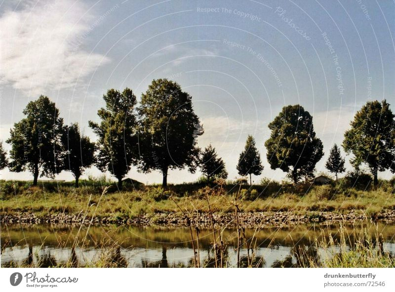 Nature Water Sky White Tree Green Blue Summer Leaf Meadow Grass Stone River
